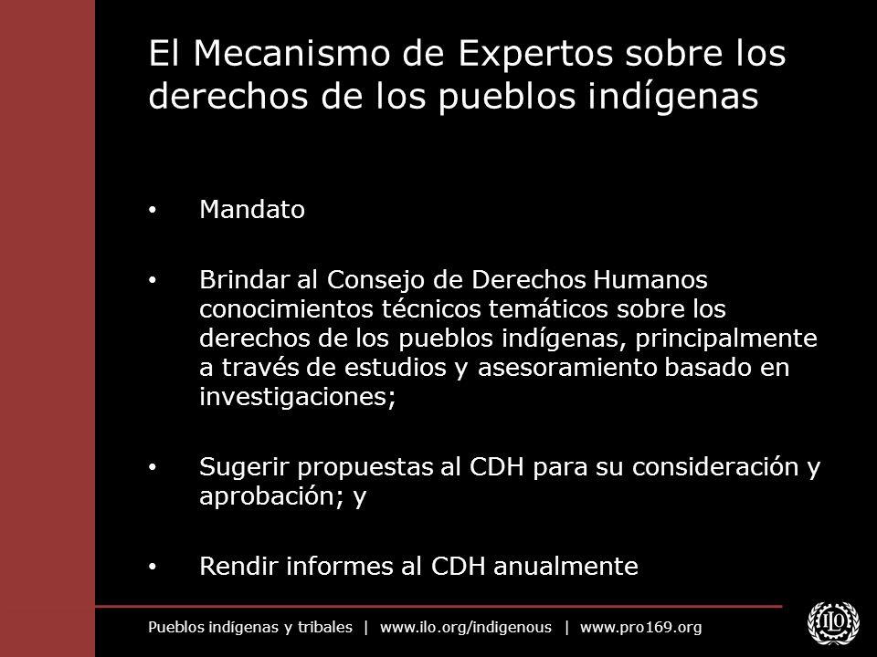 El Mecanismo de Expertos sobre los derechos de los pueblos indígenas