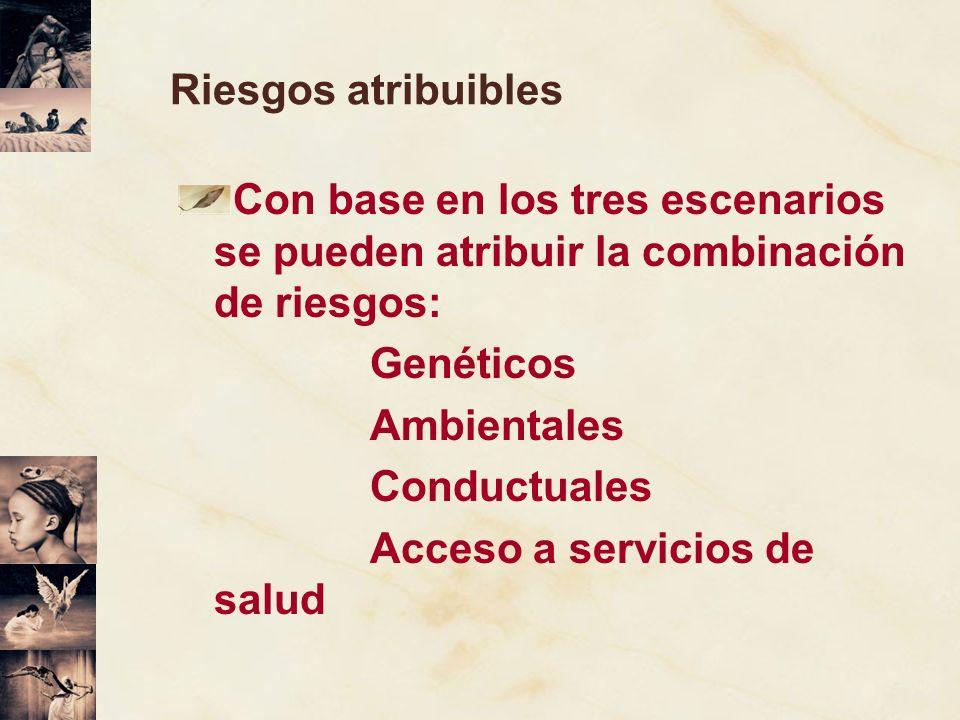 Riesgos atribuiblesCon base en los tres escenarios se pueden atribuir la combinación de riesgos: Genéticos.