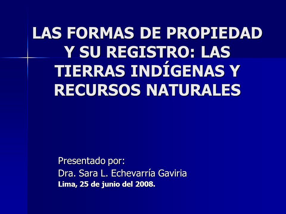 LAS FORMAS DE PROPIEDAD Y SU REGISTRO: LAS TIERRAS INDÍGENAS Y RECURSOS NATURALES