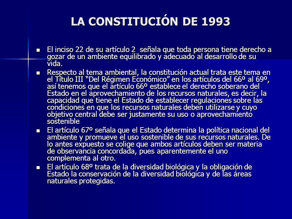LA CONSTITUCIÓN DE 1993