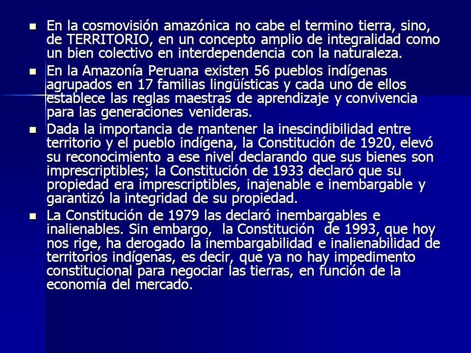 En la cosmovisión amazónica no cabe el termino tierra, sino, de TERRITORIO, en un concepto amplio de integralidad como un bien colectivo en interdependencia con la naturaleza.