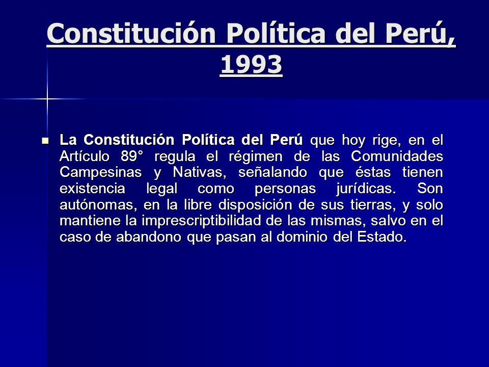 Constitución Política del Perú, 1993