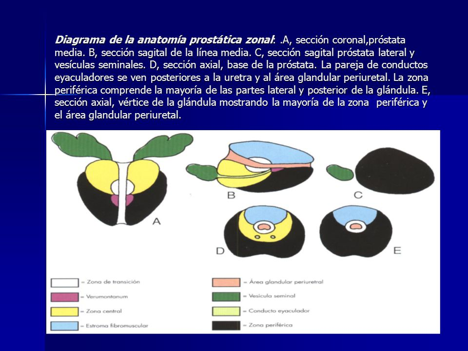 Autores: Dra María Elena Moreno Díaz.* Lic José Miguel Chao Paredes ...