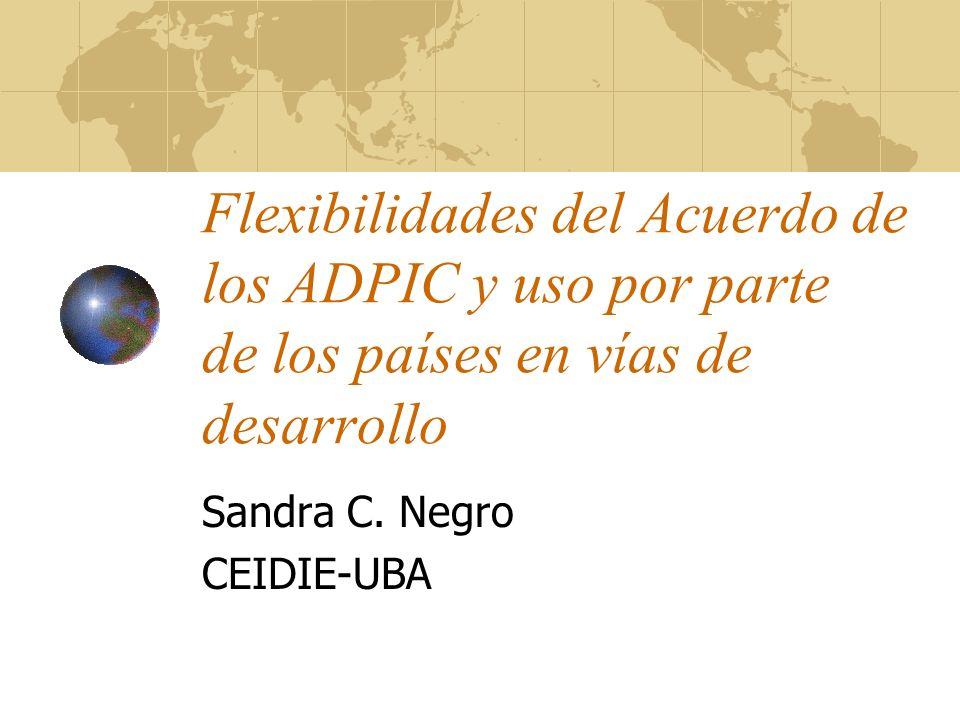 Sandra C. Negro CEIDIE-UBA