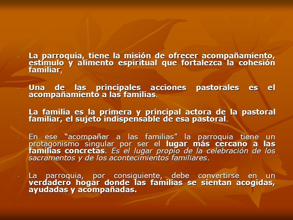 La parroquia, tiene la misión de ofrecer acompañamiento, estímulo y alimento espiritual que fortalezca la cohesión familiar,