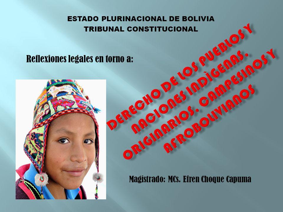 ESTADO PLURINACIONAL DE BOLIVIA TRIBUNAL CONSTITUCIONAL