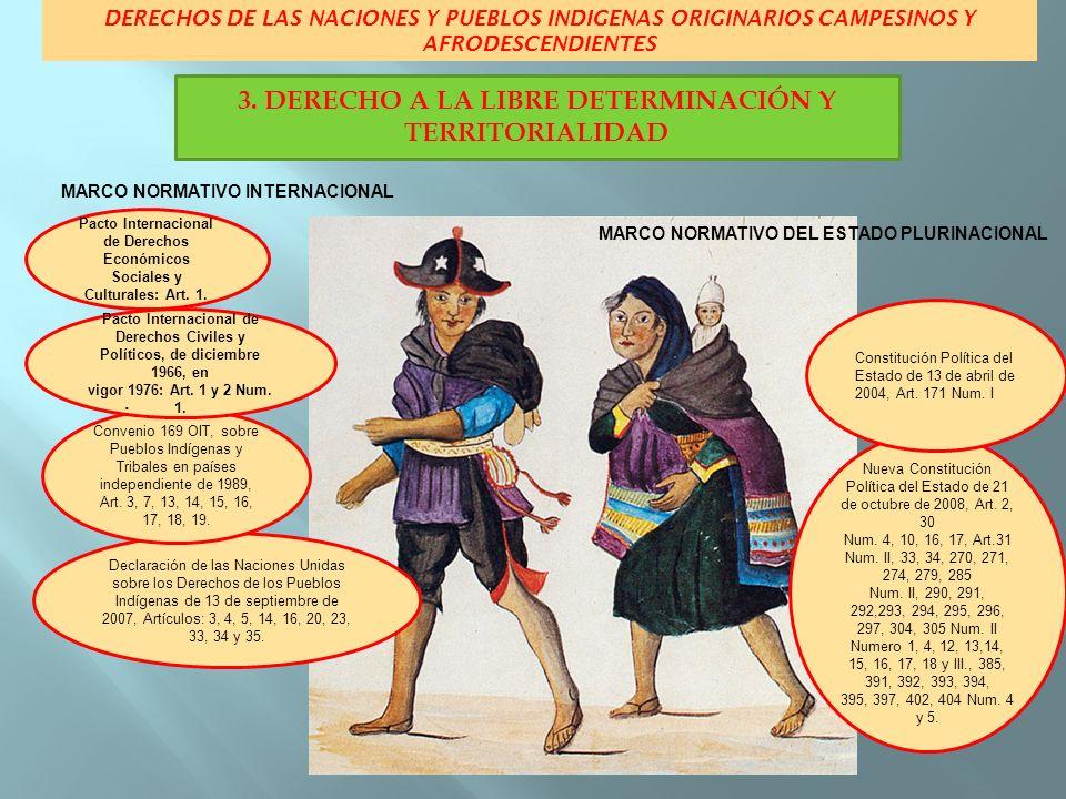 3. DERECHO A LA LIBRE DETERMINACIÓN Y TERRITORIALIDAD