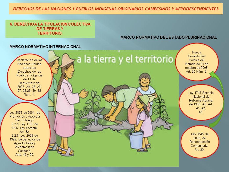 6. DERECHO A LA TITULACIÓN COLECTIVA DE TIERRAS Y