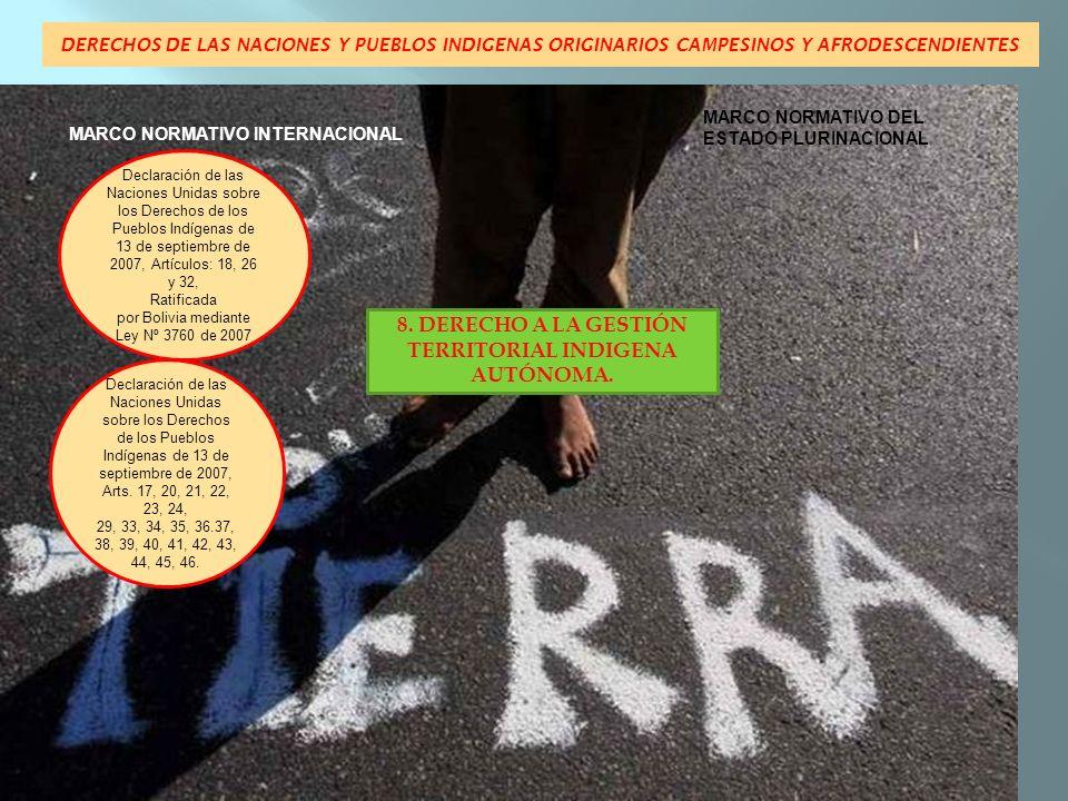 8. DERECHO A LA GESTIÓN TERRITORIAL INDIGENA