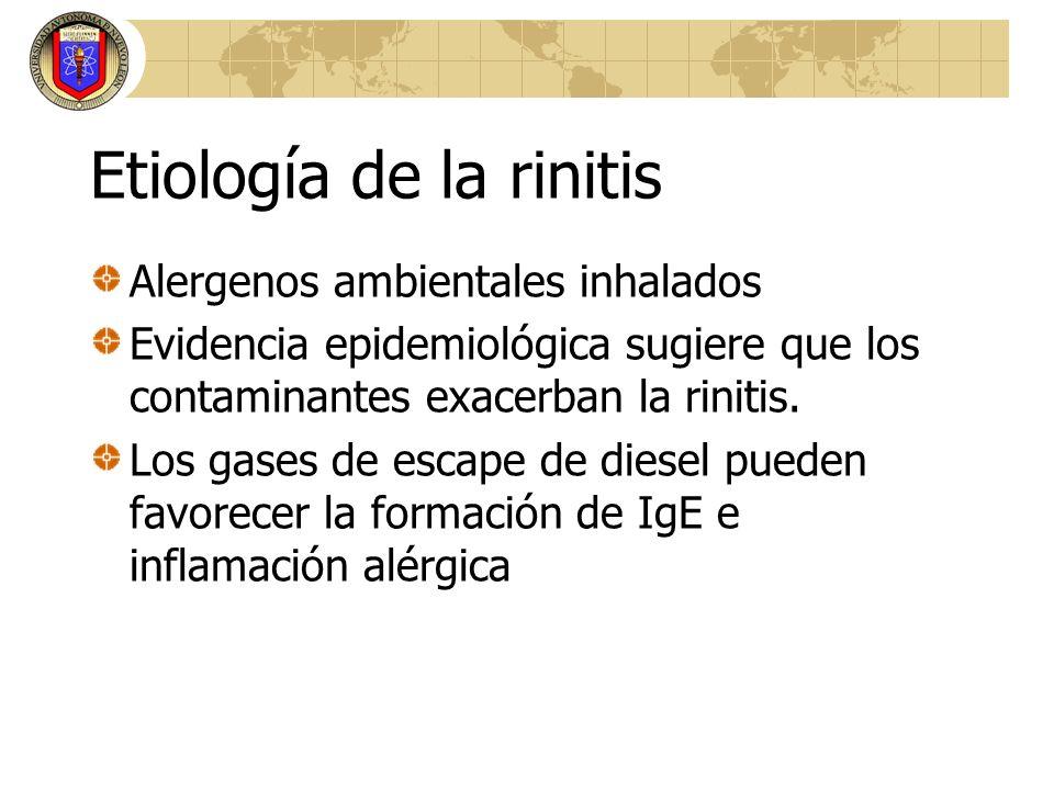 Etiología de la rinitis