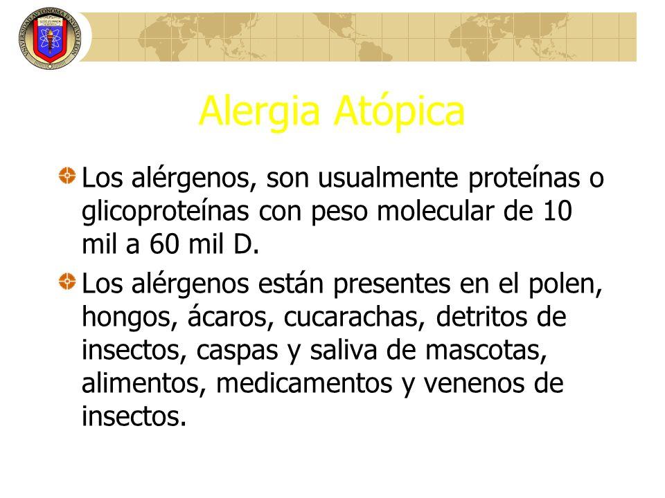Alergia AtópicaLos alérgenos, son usualmente proteínas o glicoproteínas con peso molecular de 10 mil a 60 mil D.