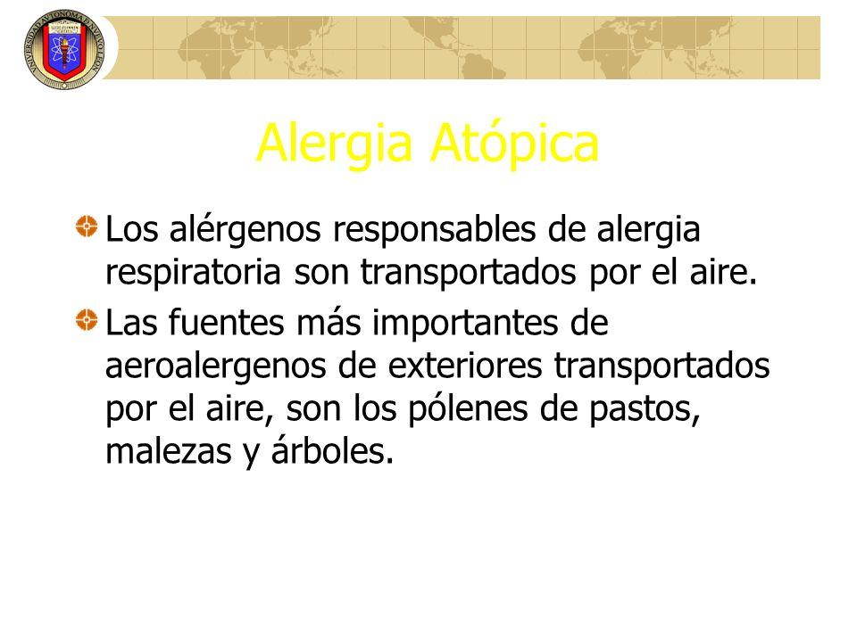 Alergia Atópica Los alérgenos responsables de alergia respiratoria son transportados por el aire.