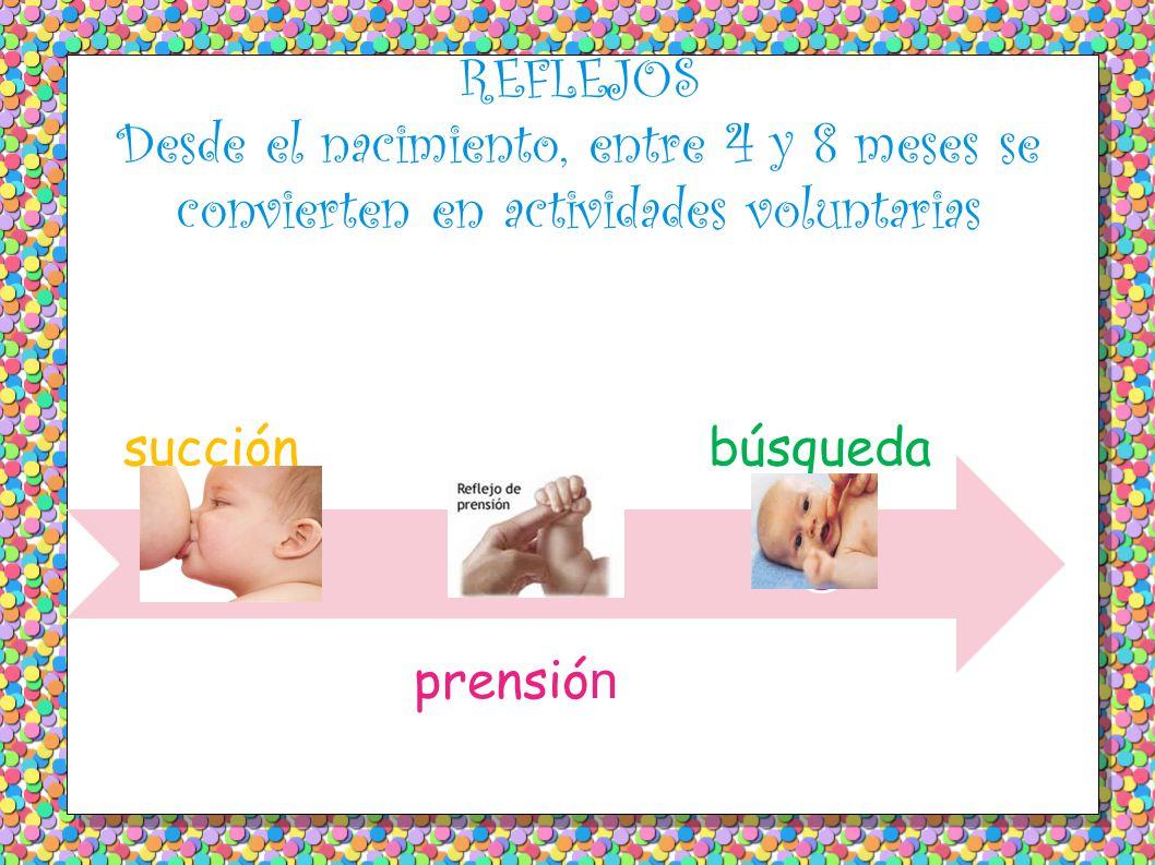 REFLEJOS Desde el nacimiento, entre 4 y 8 meses se convierten en actividades voluntarias