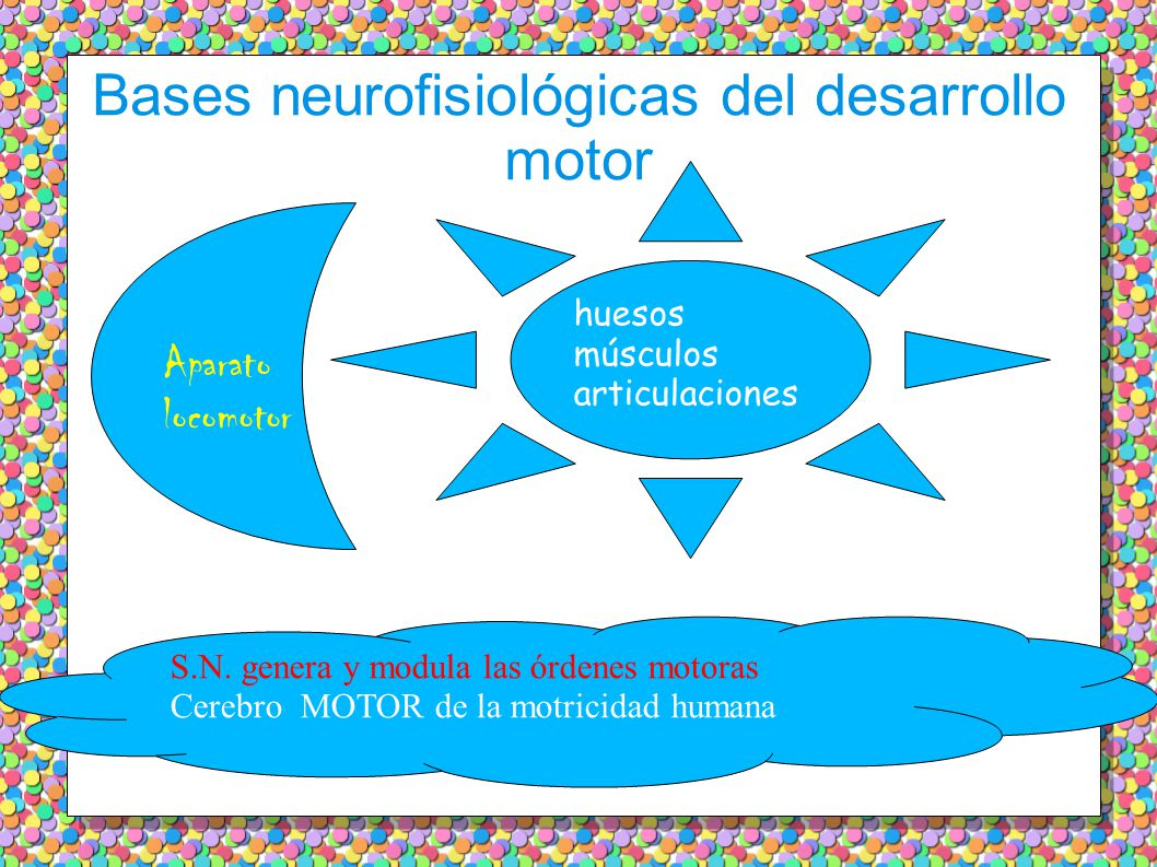 Bases neurofisiológicas del desarrollo motor