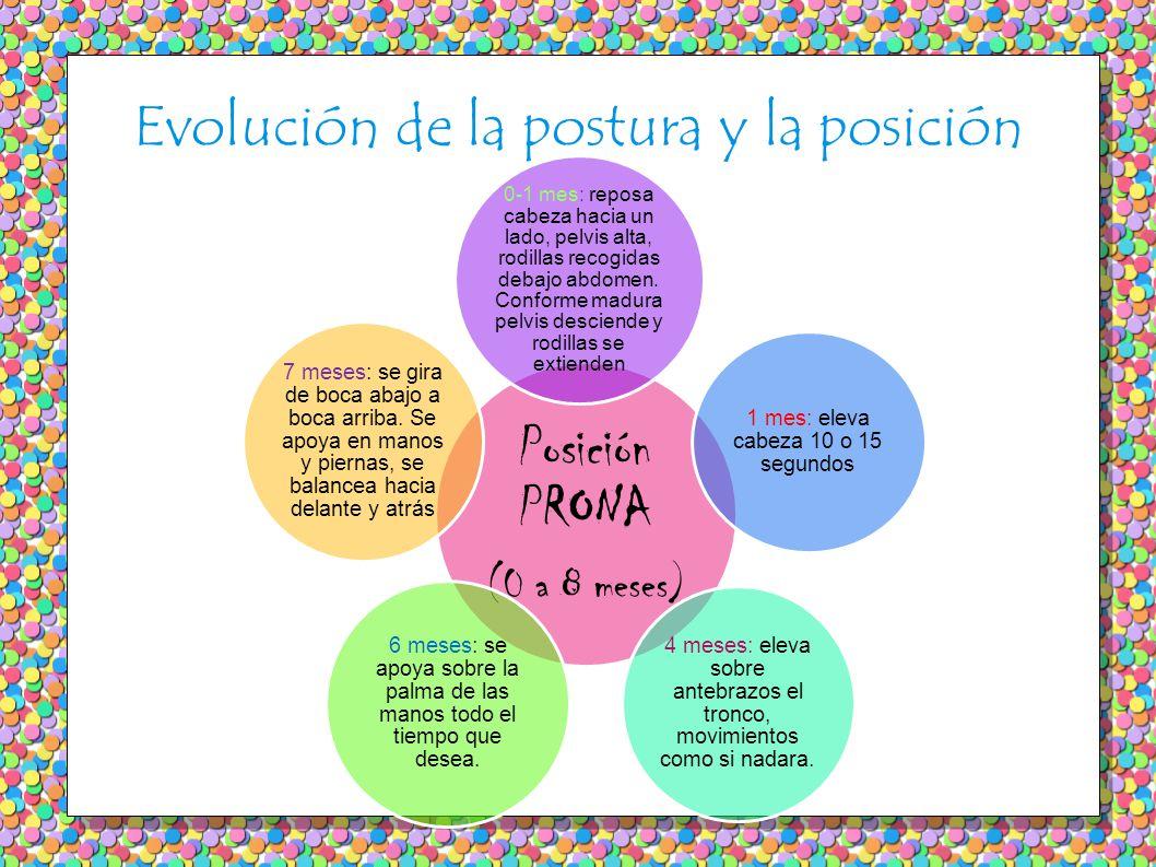 Evolución de la postura y la posición