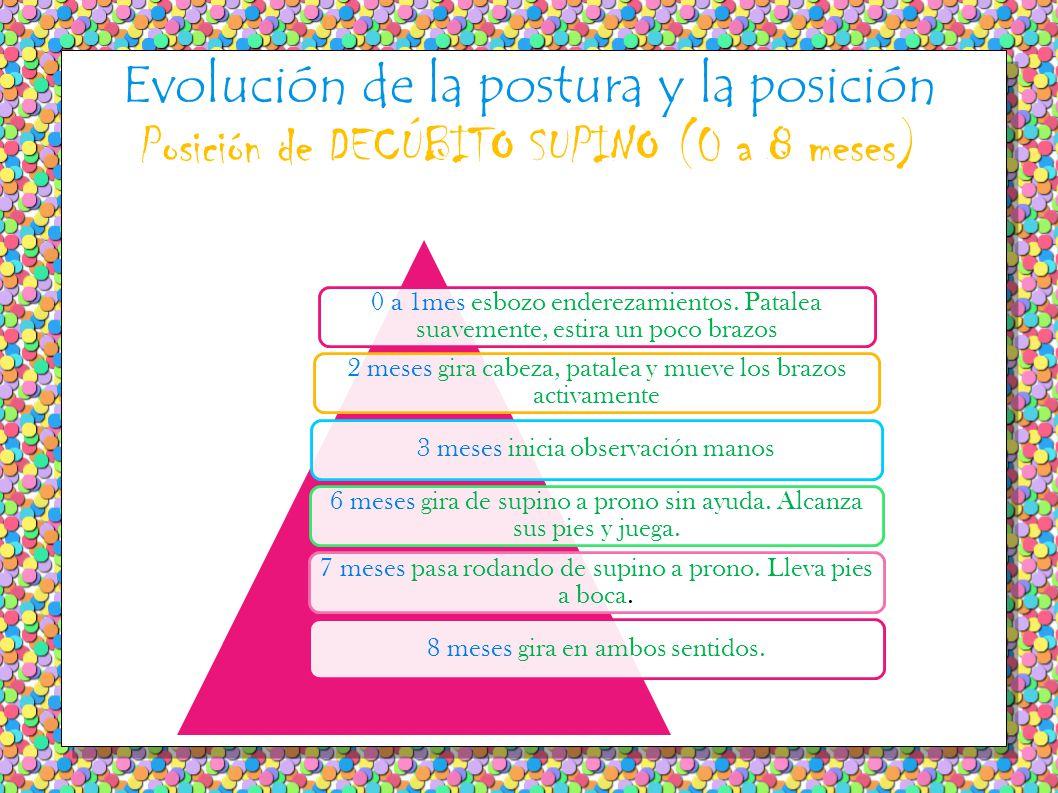 Evolución de la postura y la posición Posición de DECÚBITO SUPINO (0 a 8 meses)
