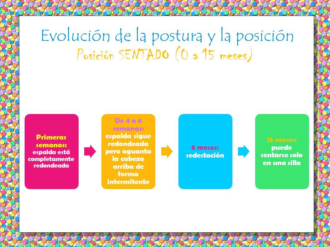Evolución de la postura y la posición Posición SENTADO (0 a 15 meses)