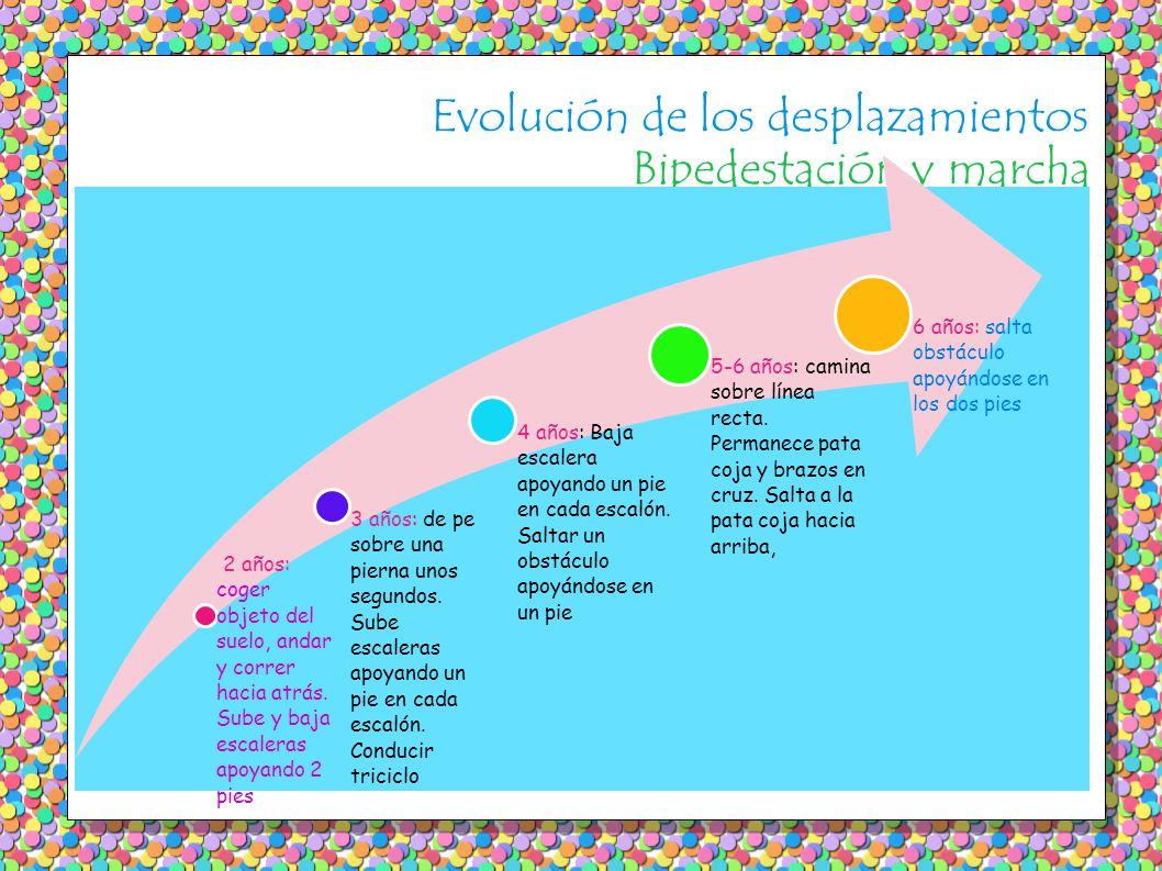 Evolución de los desplazamientos Bipedestación y marcha