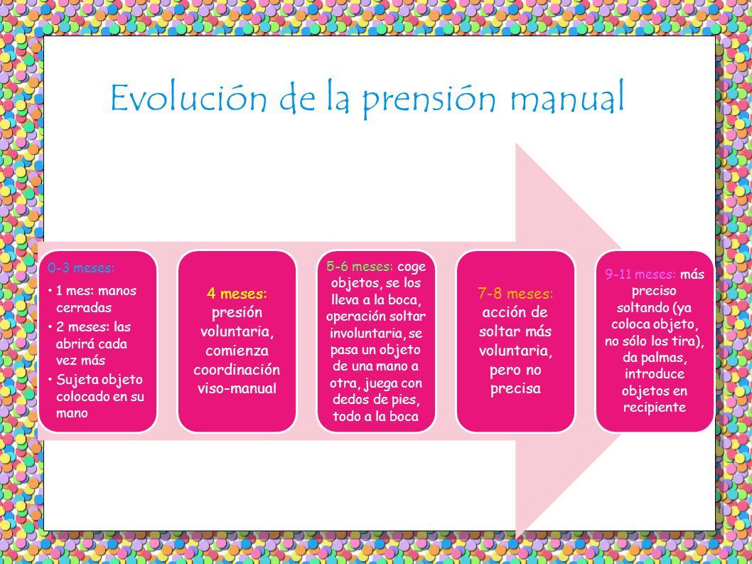 Evolución de la prensión manual