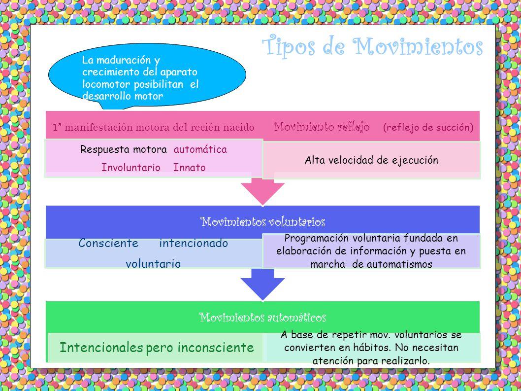 Tipos de Movimientos Movimientos voluntarios Movimientos automáticos