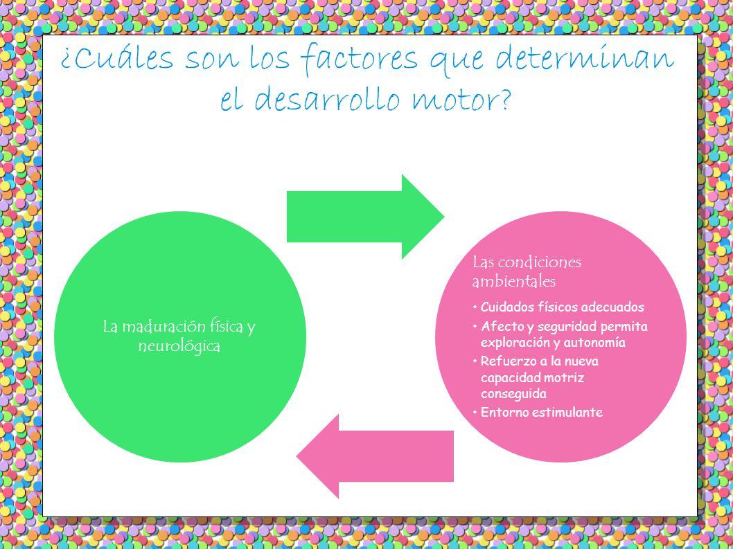 ¿Cuáles son los factores que determinan el desarrollo motor