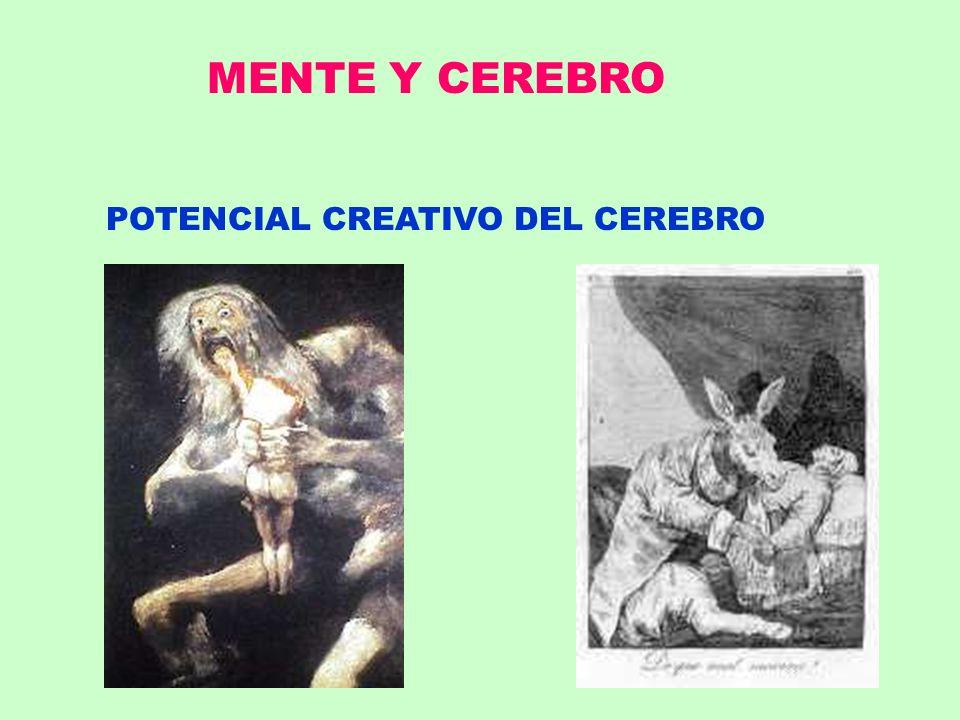 POTENCIAL CREATIVO DEL CEREBRO