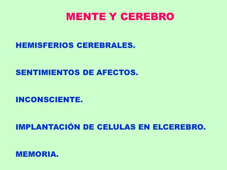 MENTE Y CEREBRO HEMISFERIOS CEREBRALES. SENTIMIENTOS DE AFECTOS.