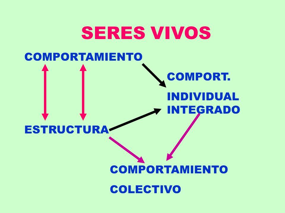 SERES VIVOS COMPORTAMIENTO COMPORT. INDIVIDUAL INTEGRADO ESTRUCTURA