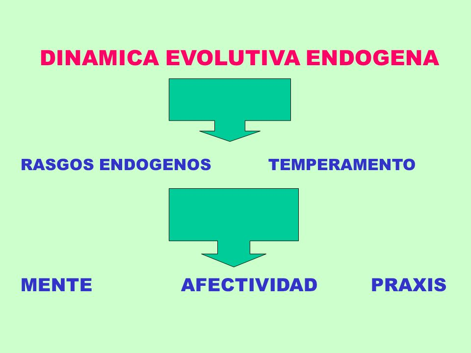 DINAMICA EVOLUTIVA ENDOGENA