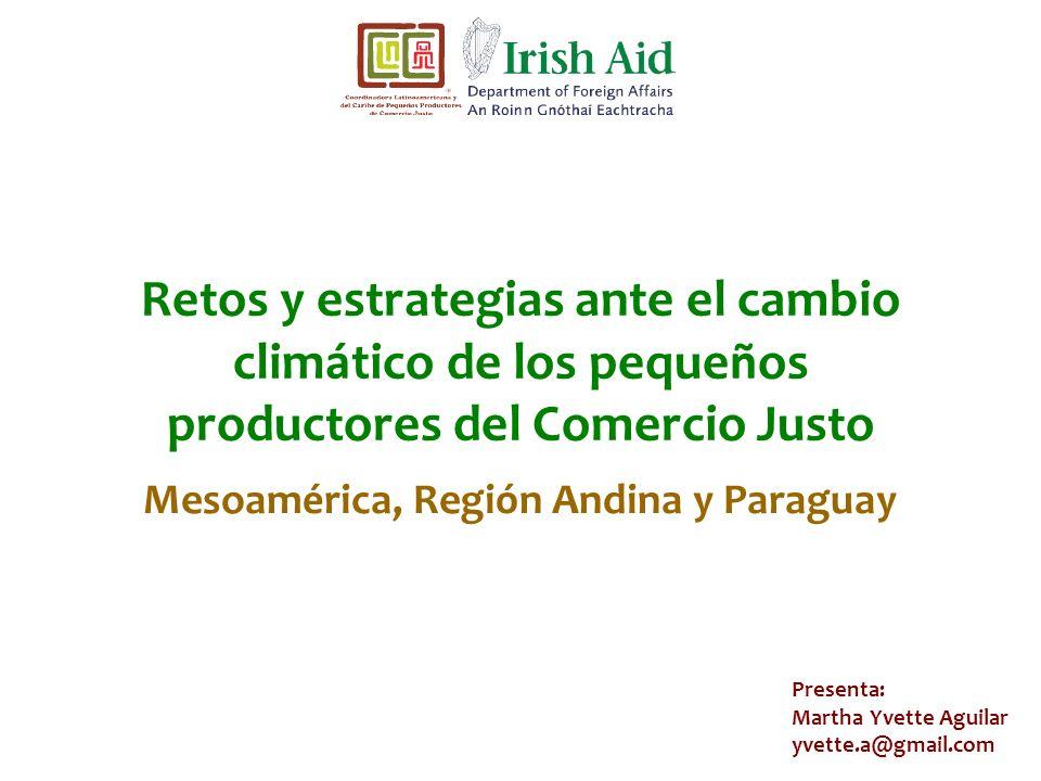 Mesoamérica, Región Andina y Paraguay