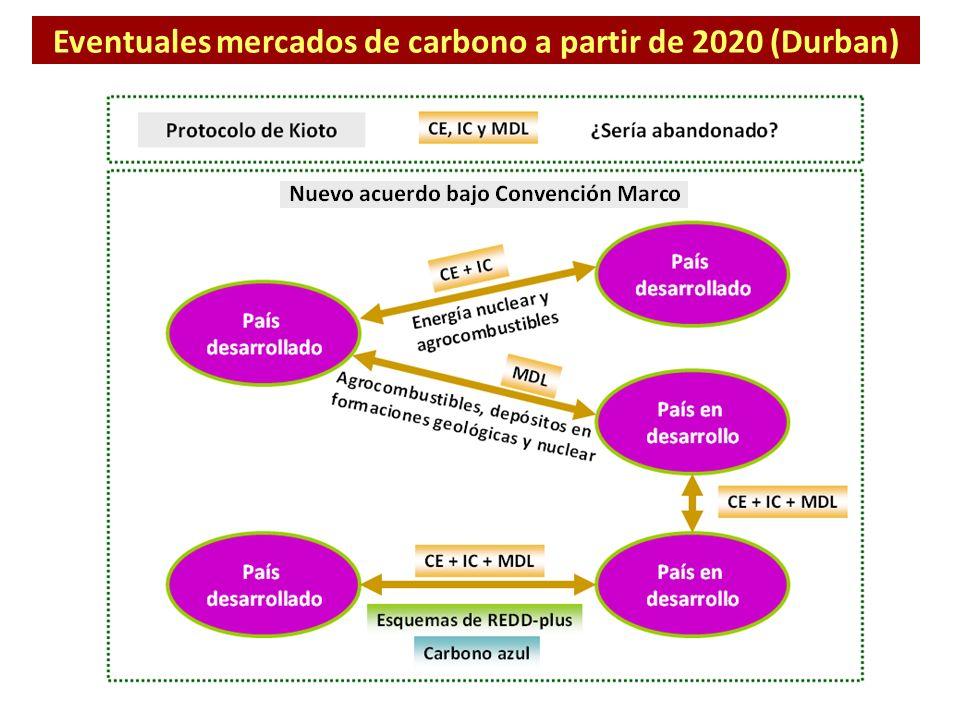 Eventuales mercados de carbono a partir de 2020 (Durban)