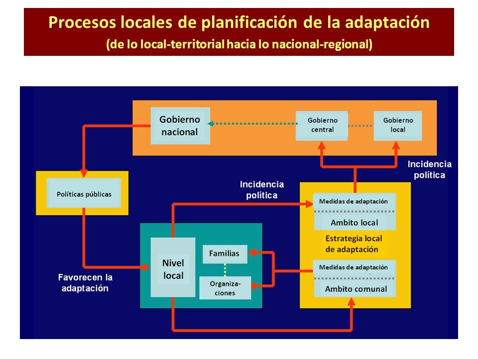 Procesos locales de planificación de la adaptación