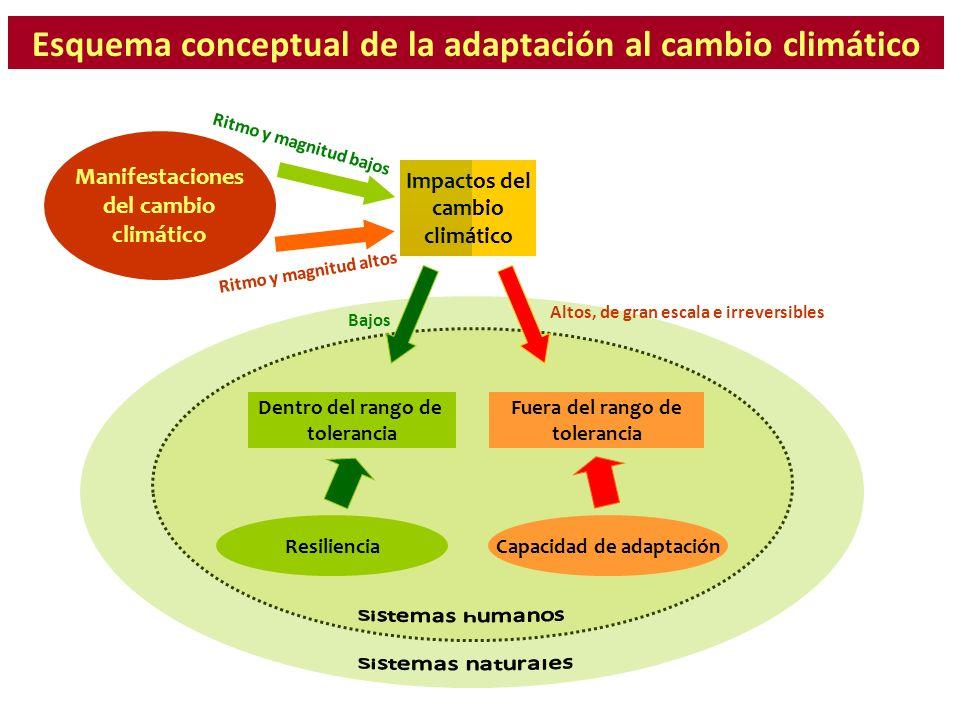 Esquema conceptual de la adaptación al cambio climático