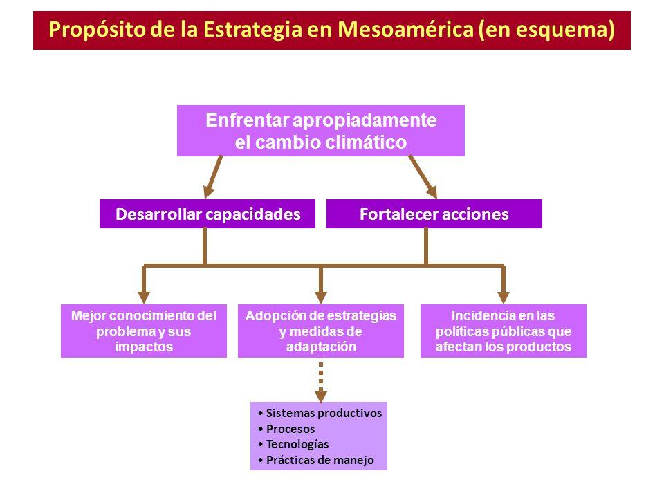 Propósito de la Estrategia en Mesoamérica (en esquema)
