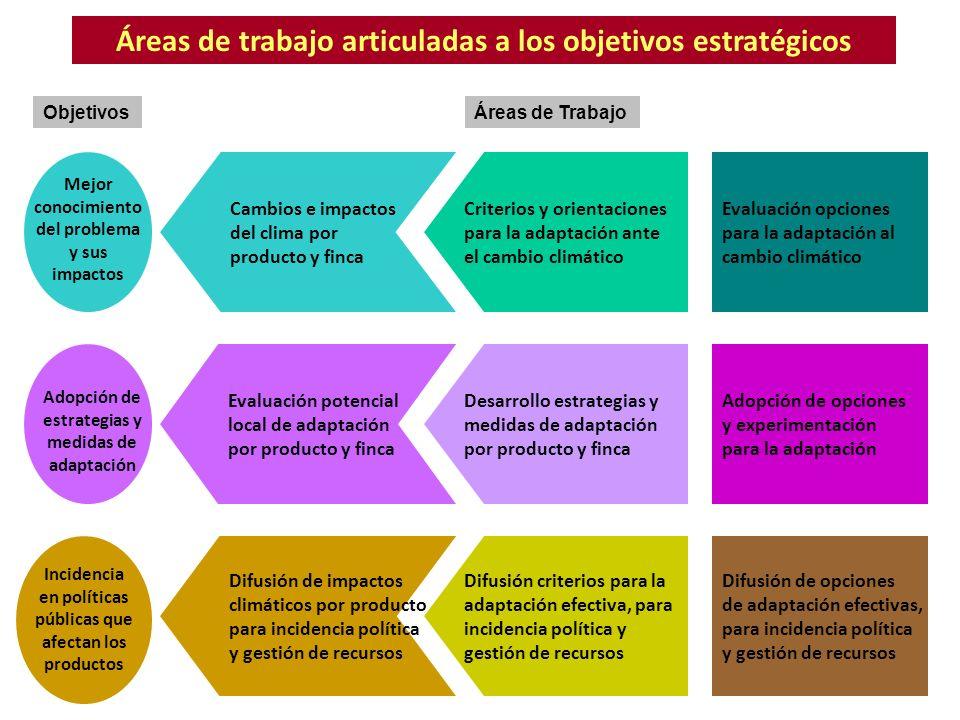 Áreas de trabajo articuladas a los objetivos estratégicos