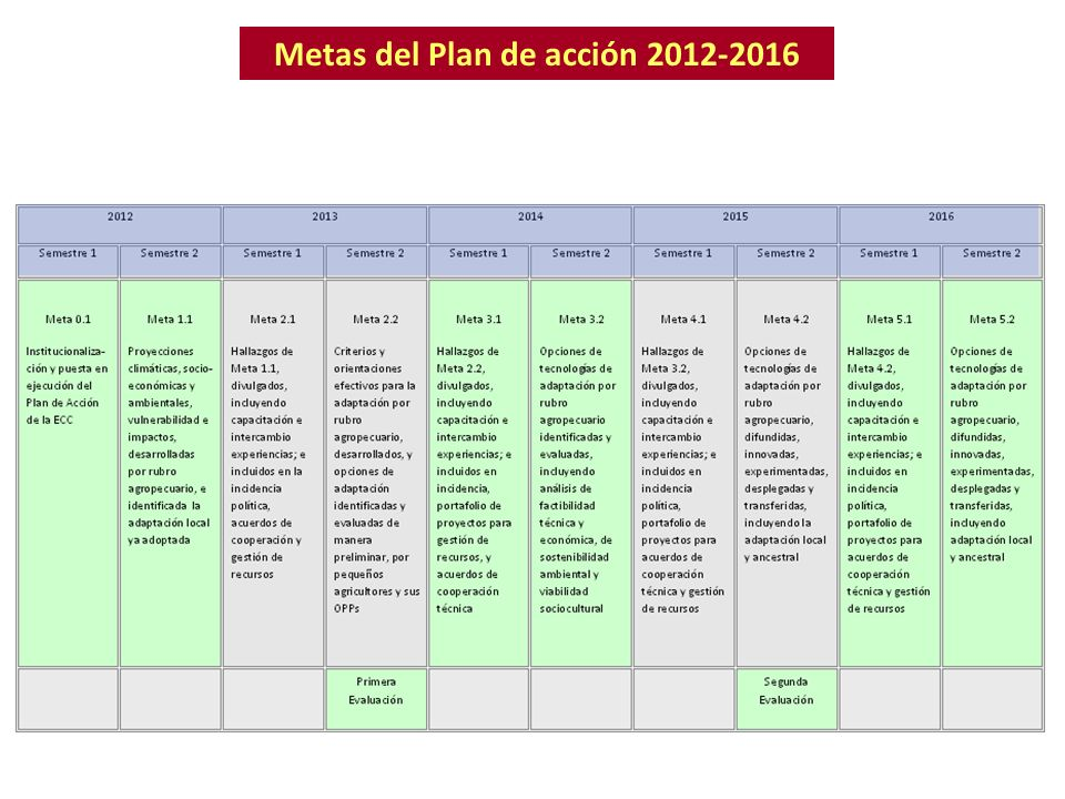 Metas del Plan de acción 2012-2016