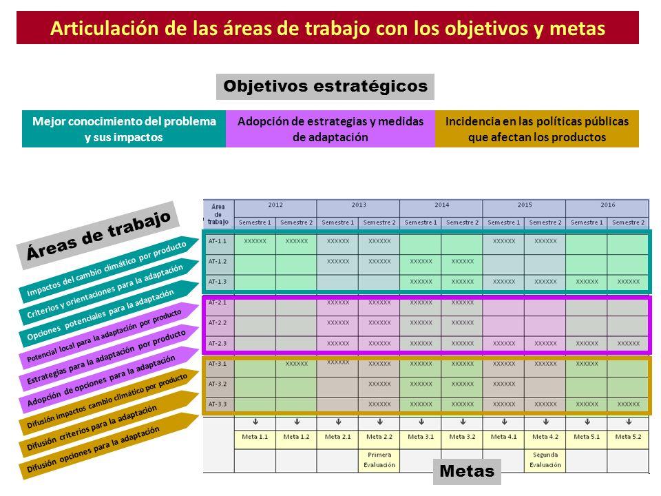 Articulación de las áreas de trabajo con los objetivos y metas