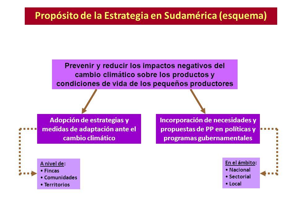 Propósito de la Estrategia en Sudamérica (esquema)
