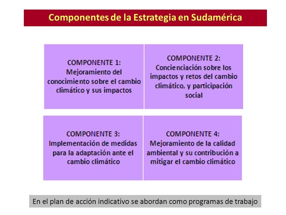 Componentes de la Estrategia en Sudamérica