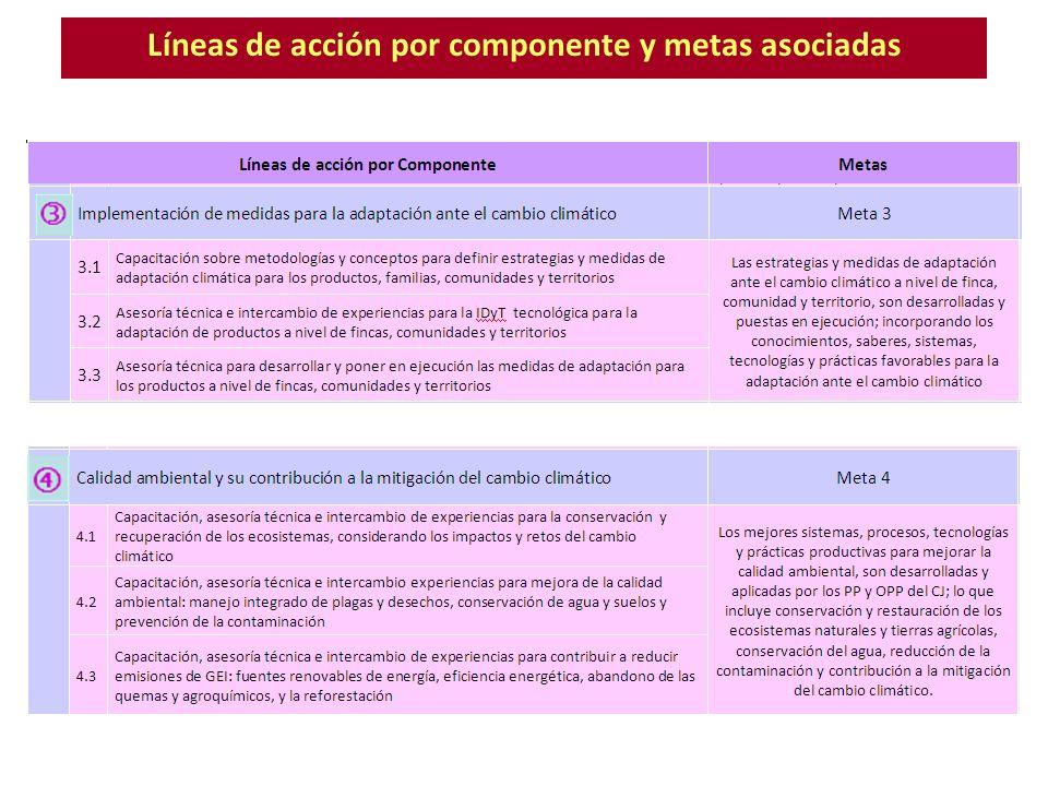 Líneas de acción por componente y metas asociadas
