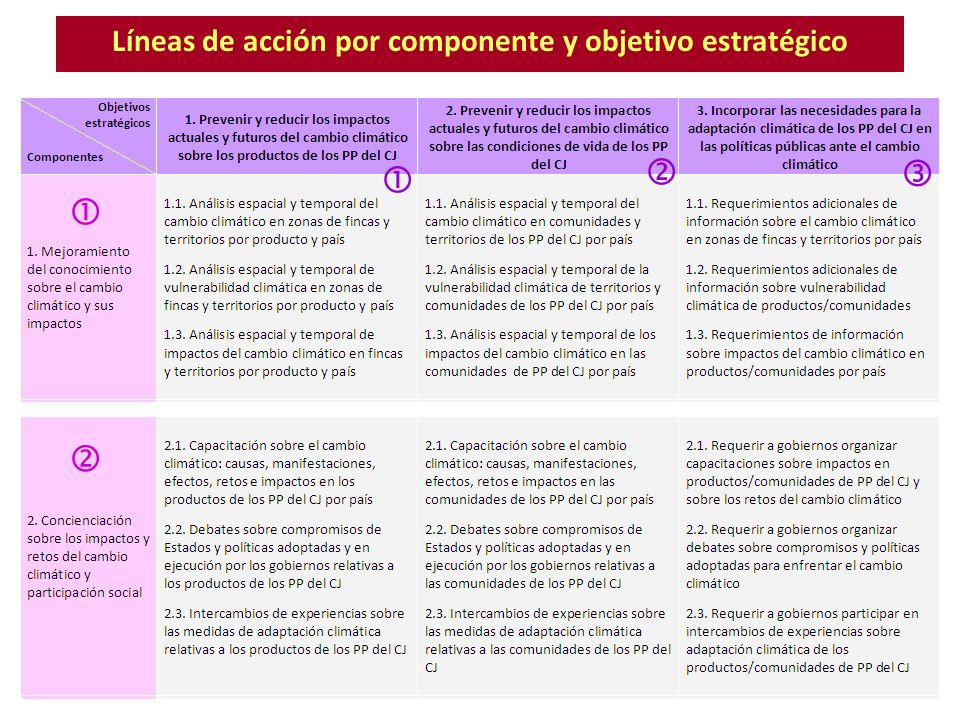 Líneas de acción por componente y objetivo estratégico