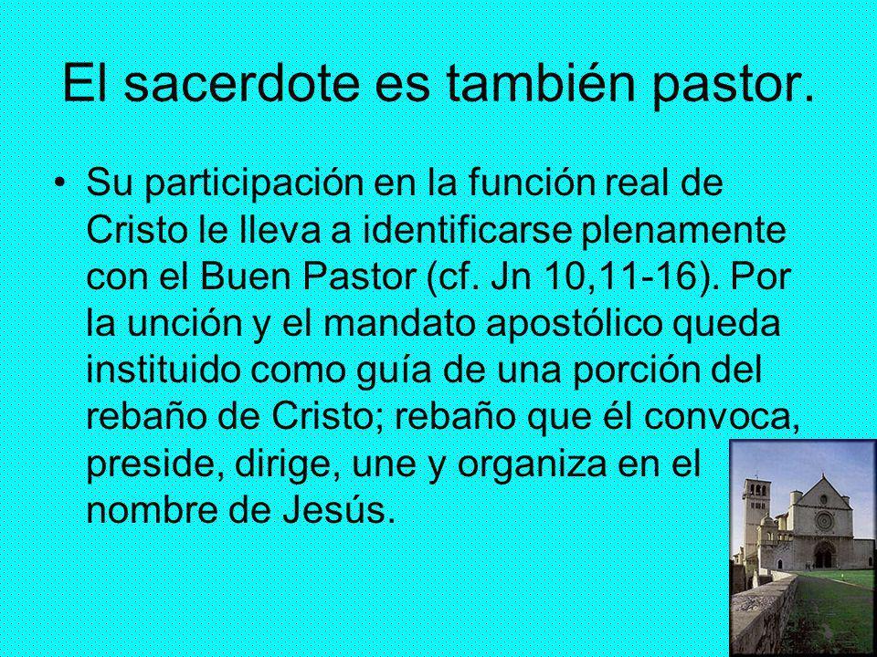 El sacerdote es también pastor.