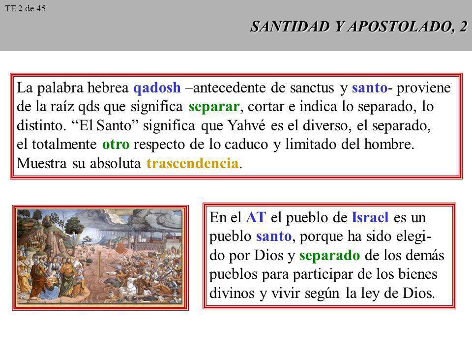 La palabra hebrea qadosh –antecedente de sanctus y santo- proviene