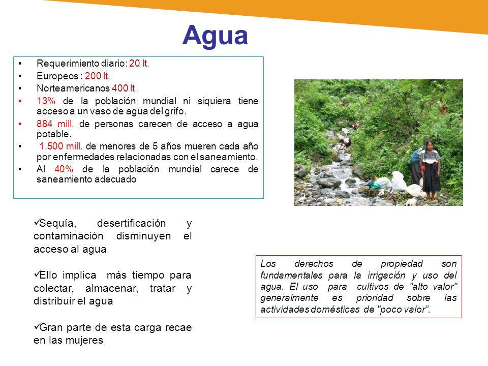 Agua Requerimiento diario: 20 lt. Europeos : 200 lt. Norteamericanos 400 lt .