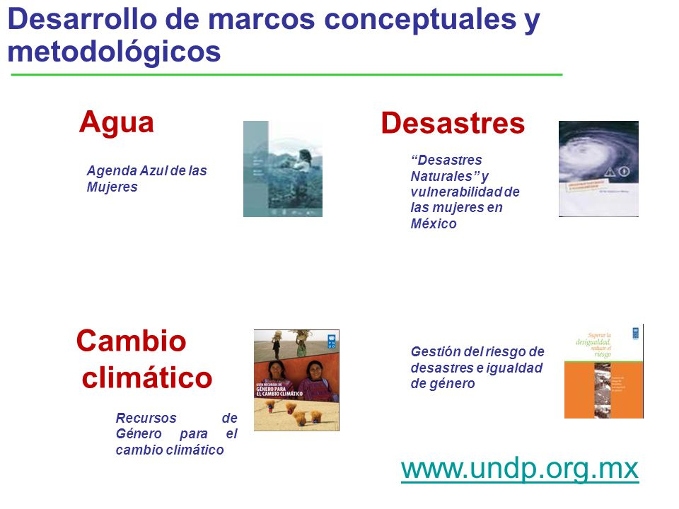Desarrollo de marcos conceptuales y metodológicos
