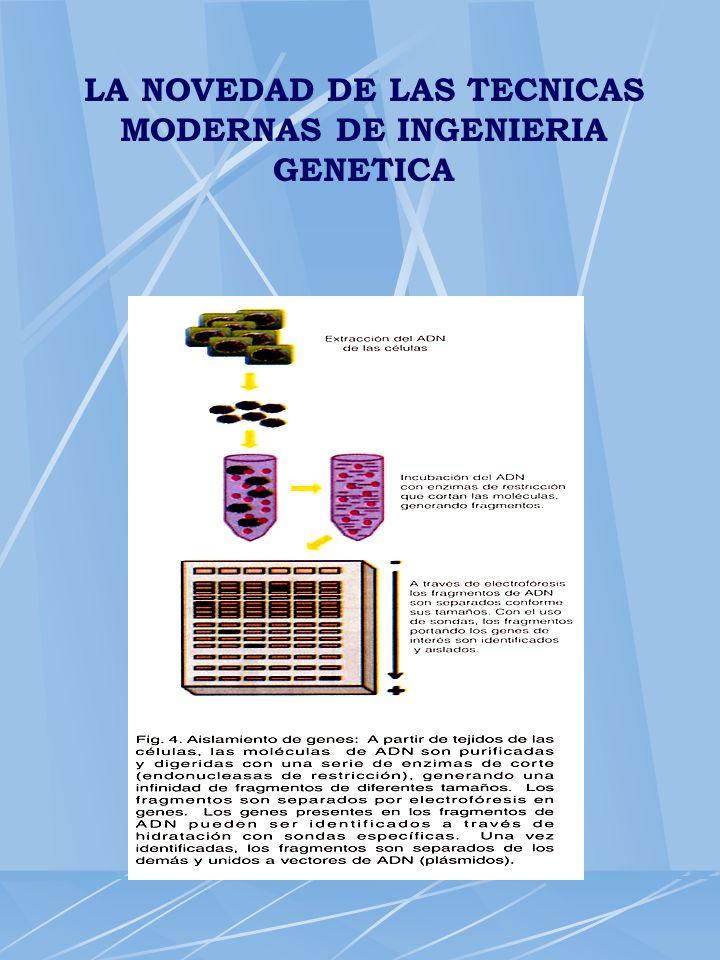 LA NOVEDAD DE LAS TECNICAS MODERNAS DE INGENIERIA GENETICA