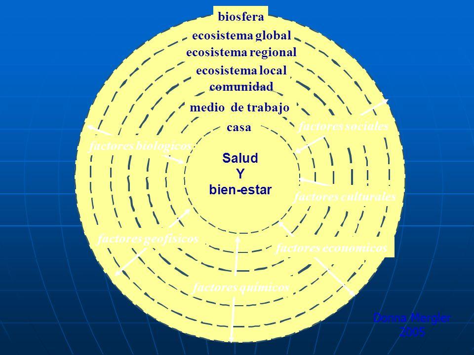 biosfera ecosistema global ecosistema regional ecosistema local