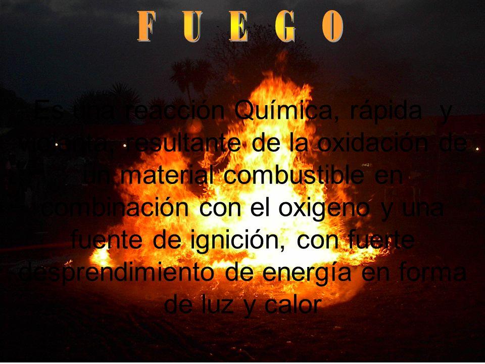 F U E G O