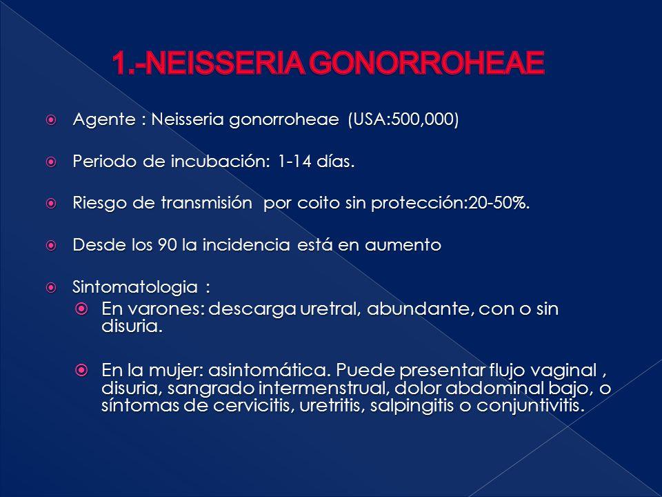 1.-NEISSERIA GONORROHEAE