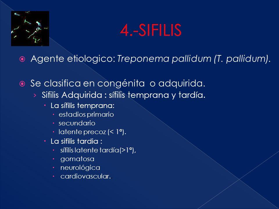 4.-SIFILIS Agente etiologico: Treponema pallidum (T. pallidum).